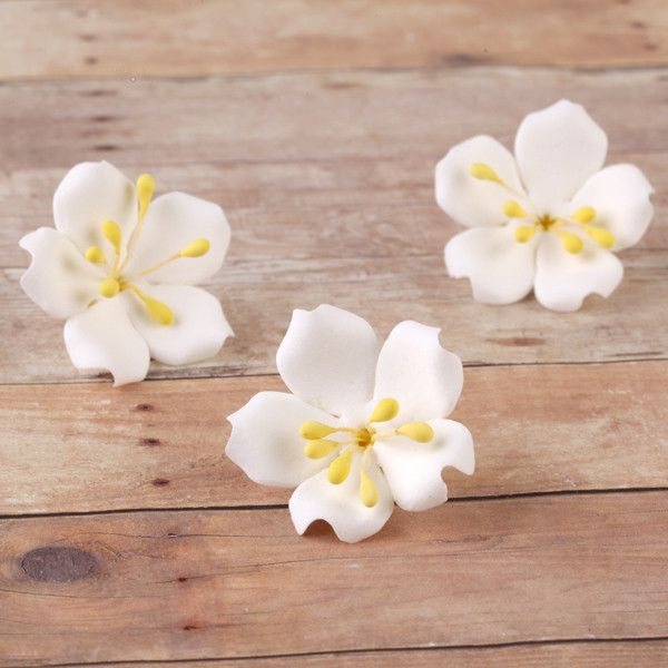 Jasmine SugarFlowers made from gumpaste perfect as cake toppers and cupcake toppers cake decorations. | CaljavaOnline.com