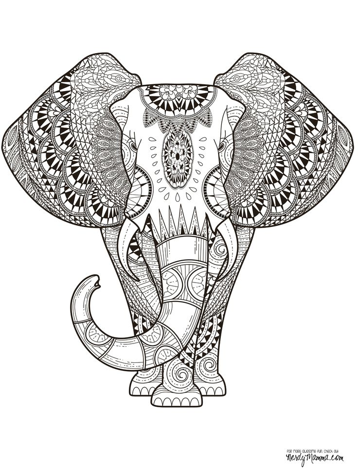 Elephant abstract doodle zentangle paisley coloring pages colouring adult detailed advanced printable kleuren voor volwassenen coloriage