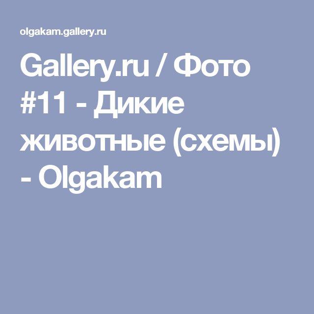 Gallery.ru / Фото #11 - Дикие животные (схемы) - Olgakam