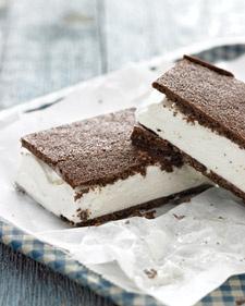 mmm.....ice cream sandwiches.  Big fan!!   Fun party treat!