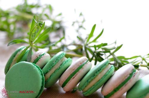 Waldmeister-Macarons