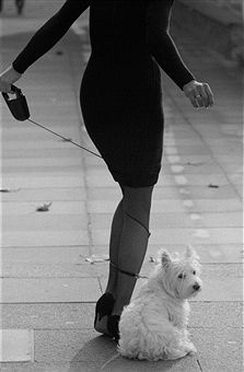 Paula Hamilton, Model Paula Hamilton with her dog Titch, St James's, London, 10th October 1989.