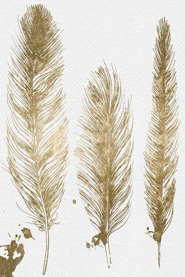 Oliver Gal Gold Feathers Wall Art Only a feather that is real, would be gold, unlike a painted one