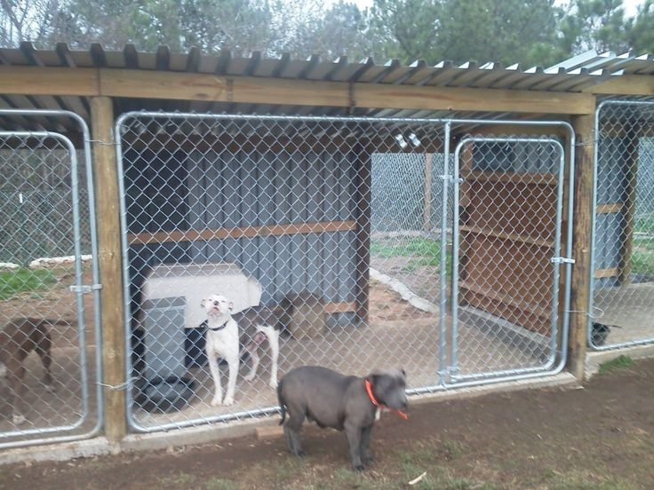 30 clever designs of how to build backyard dog kennel