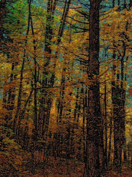 Woodcut Color Sweep