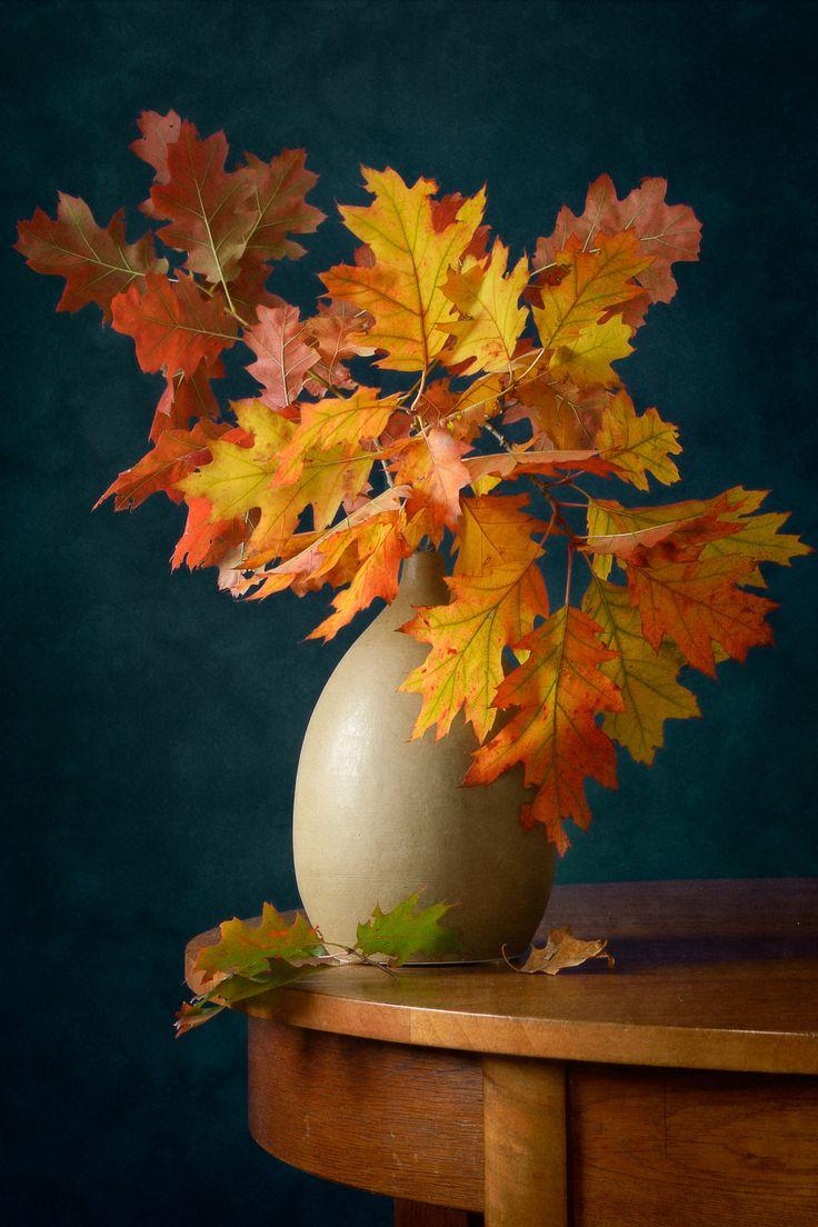 Осень в поле картинки красивые куба