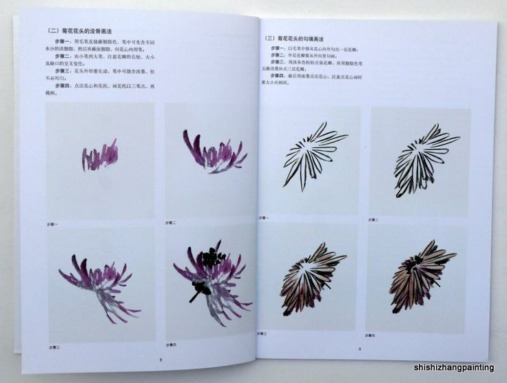 Chinese Painting Book How to Paint Chrysanthemum Flowers Asian Traditional Art | eBay