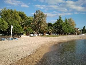 beach of Nikiti
