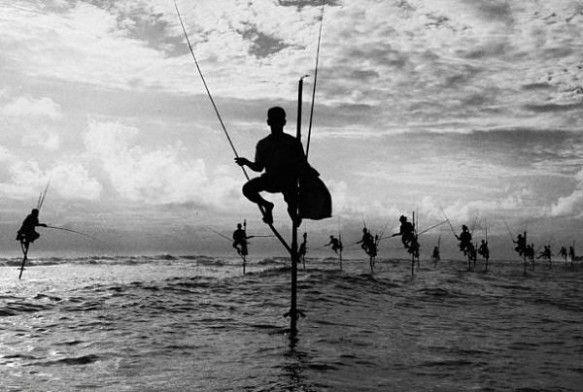 The Stilt Fishermen of Kathaluwa