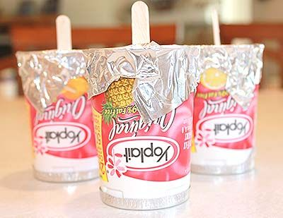 Frozen yogurt pops . . . we buy Yoplait all the time and the kids love the flavors.  This sounds like the PERFECT summer snack. (thanks to Jillee because I would never have thought of this!)