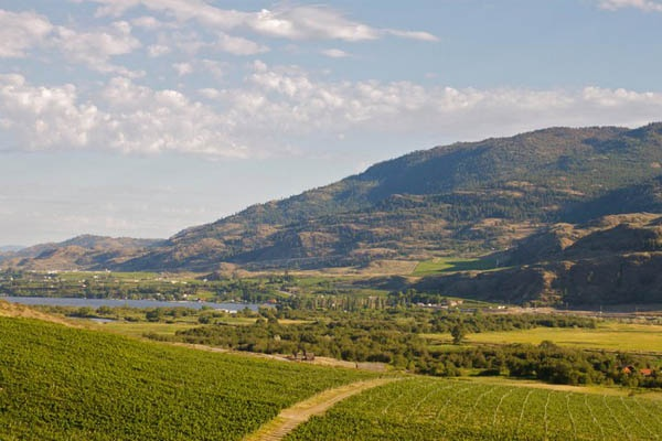Okanagan, BC as a wine drinking bachelorette destination.