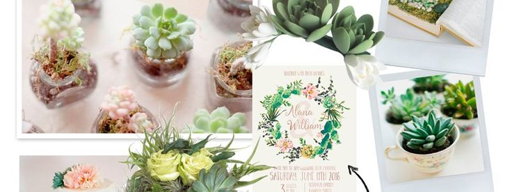 Succulents are one of the most Fab Trends for Weddings Next year!