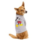 Zeus could look so JoeCool in this! Top Paw Chillin Tee from PetSmart #PetLoveSweeps