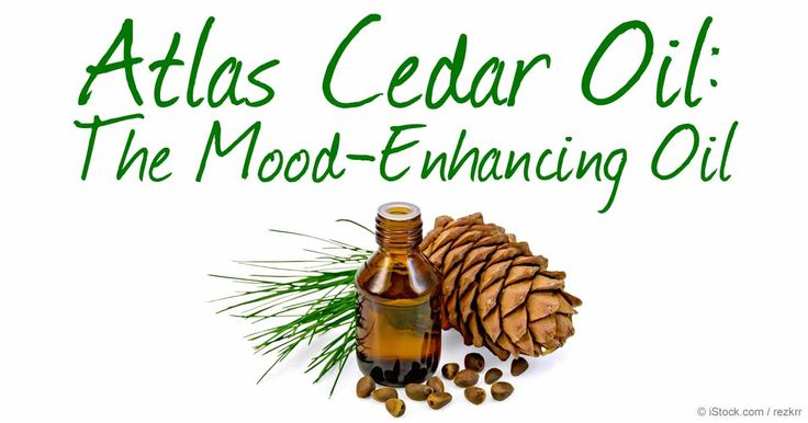 Atlas cedar oil provides strength and stability. Learn more about this essential oil that symbolizes fertility, power, and masculinity by reading this article. http://articles.mercola.com/herbal-oils/atlas-cedar-oil.aspx