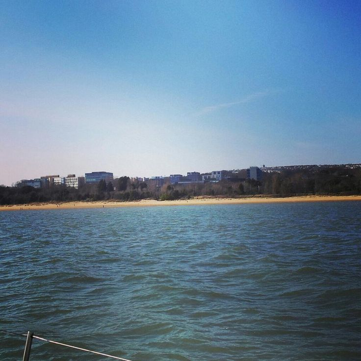 Campus from the sea, April 2013 (via @dolphinboywill)