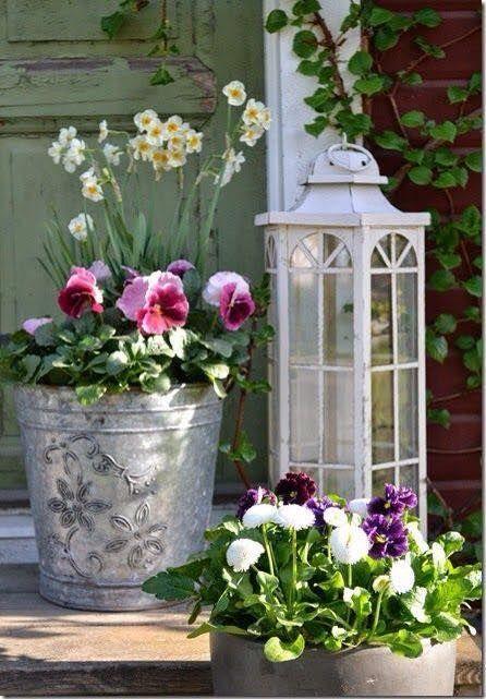 330 best flower violas pansies images on pinterest for Shabby chic deko ideen