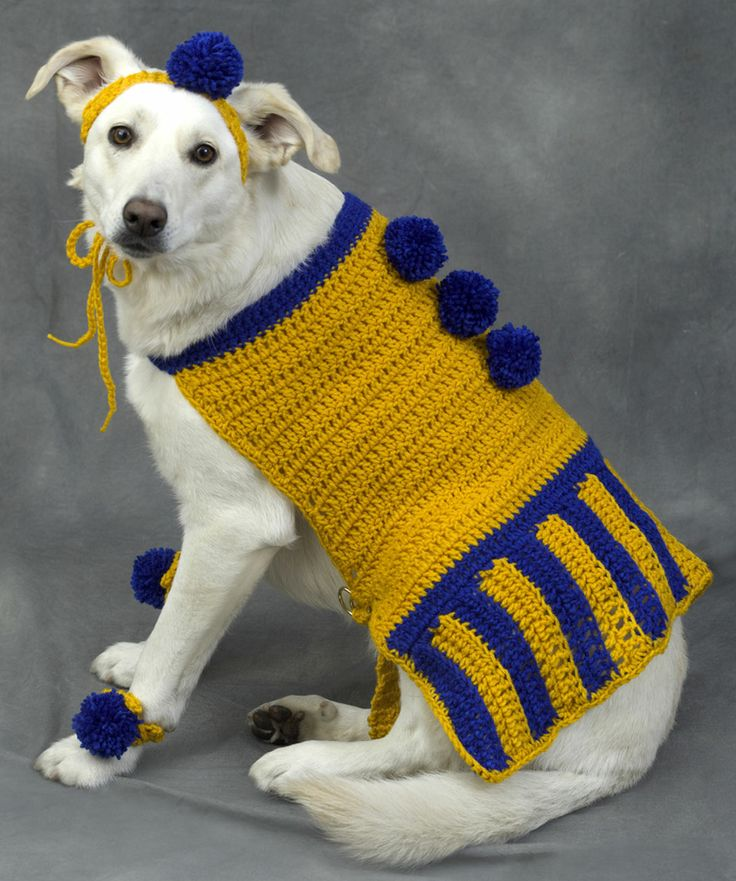sweaters Dog crochet