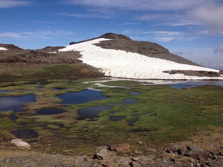 Deshaciéndose los lagunillos #sierranevada #hiking