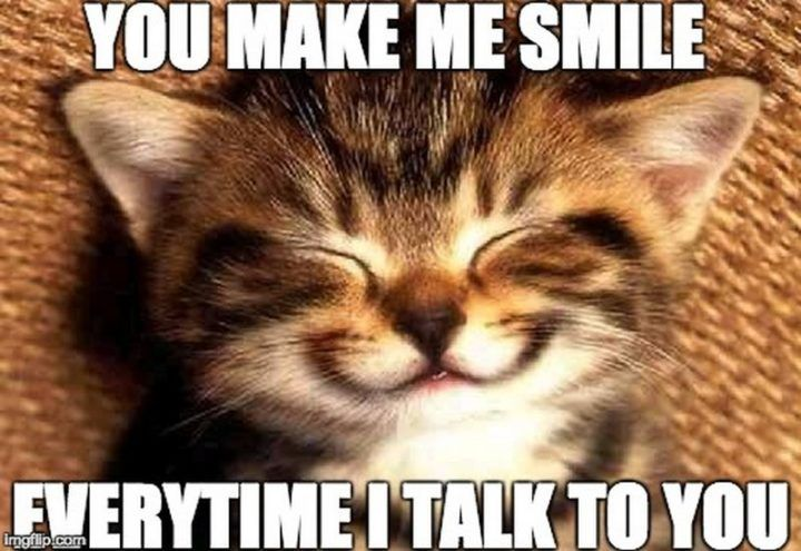 85 Happy Memes To Brighten Your Day And Make You Smile Happy Memes Happy Birthday Cat Kittens Funny