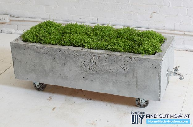 Concrete Planter | 7 DIY Concrete Projects You Can Make With One $5 Bag Of Concrete Mix