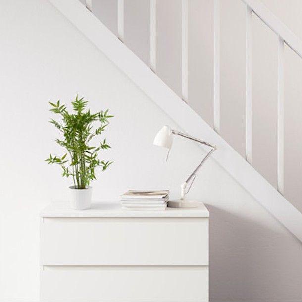 Les 25 meilleures id es concernant bambou artificiel sur for Ikea plantes d interieur