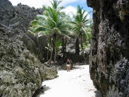 niue island - Google Search