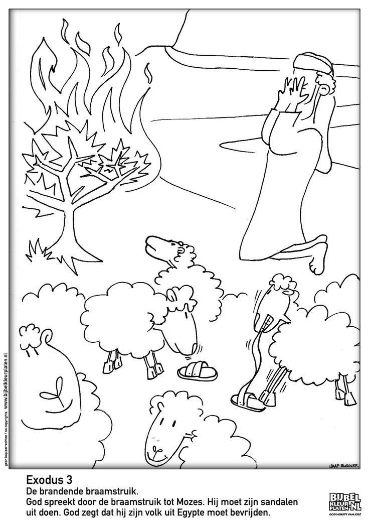 exodus 2 mozes en de brandende braamstruik brandende