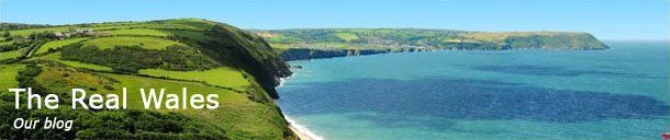 West Wales Holiday Cottages in Pembrokeshire, Ceredigion and Carmarthen for self catering holidays and short breaks which are dog friendly.