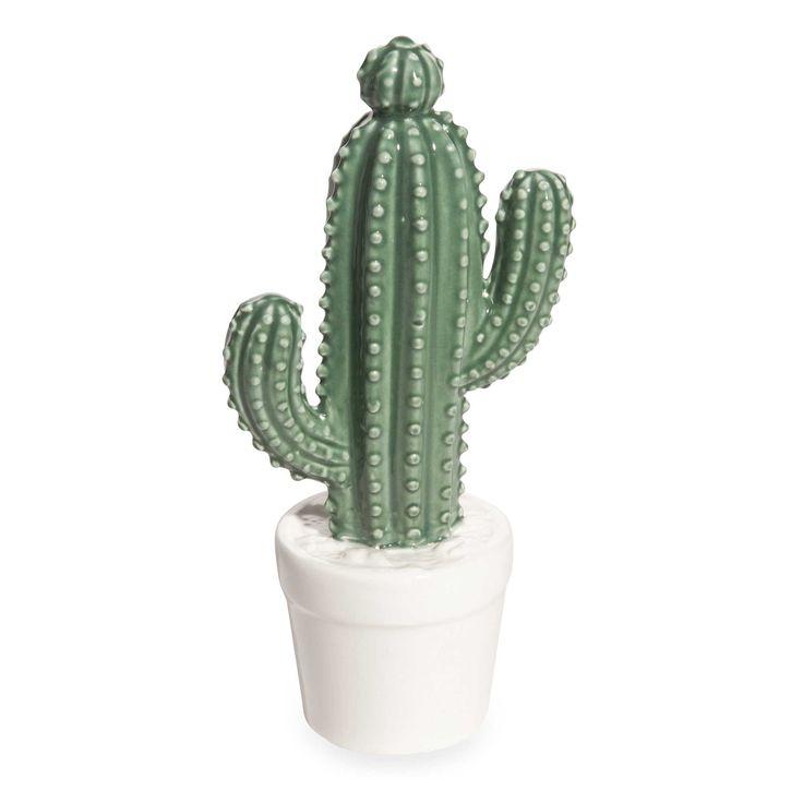 Hairless cactus tgp