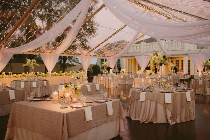 12 best wedding decor images on pinterest weddings wedding tented wedding supply store and bounce house rental party rentals junglespirit Gallery