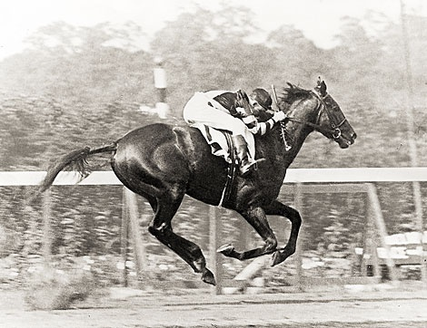 War Admiral stumbled at the start of the Belmont Stakes, and tore off a piece of his front hoof. Despite this, he won by 3 lengths, and set a new track record of 2:28 1/5, a fifth faster than his sire, Man o'War. ~ Photo: NYRA