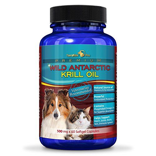 146 best krill oil benefits for health images on pinterest for Dog food with fish oil