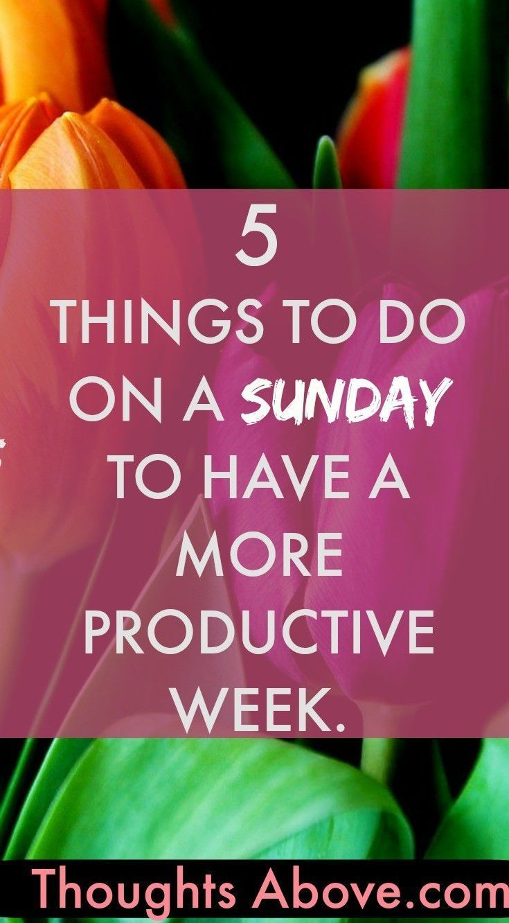 What do you usually do on Sunday? Sunday is a very significant day of the week.How you spent your Sunday has an impact how your week will be from Monday. So have narrowed down 5 things to do on a Sunday to 1. have a more productive week, how to spend your