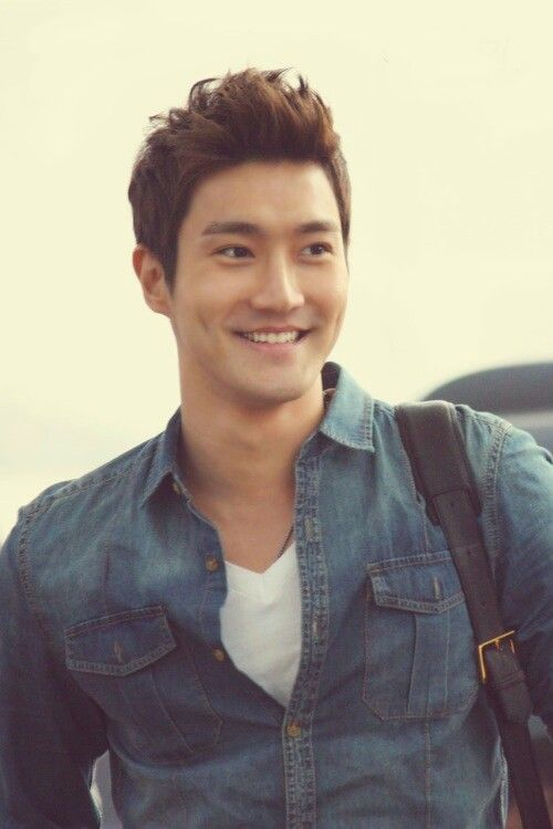 Choi Siwon (시원): Super Junior, Attack on the Pin-Up Boys, King of Dramas, Skip Beat/Extravagant Challenge, She Was Pretty