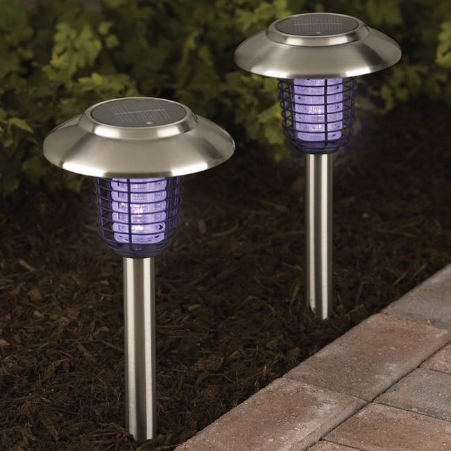 Solar Powered Bug Zapper and Accent Lights