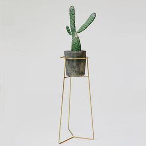 Pot Plant Stand - Matte Gold Finish #worthynzhomeware wwworthy.co.nz