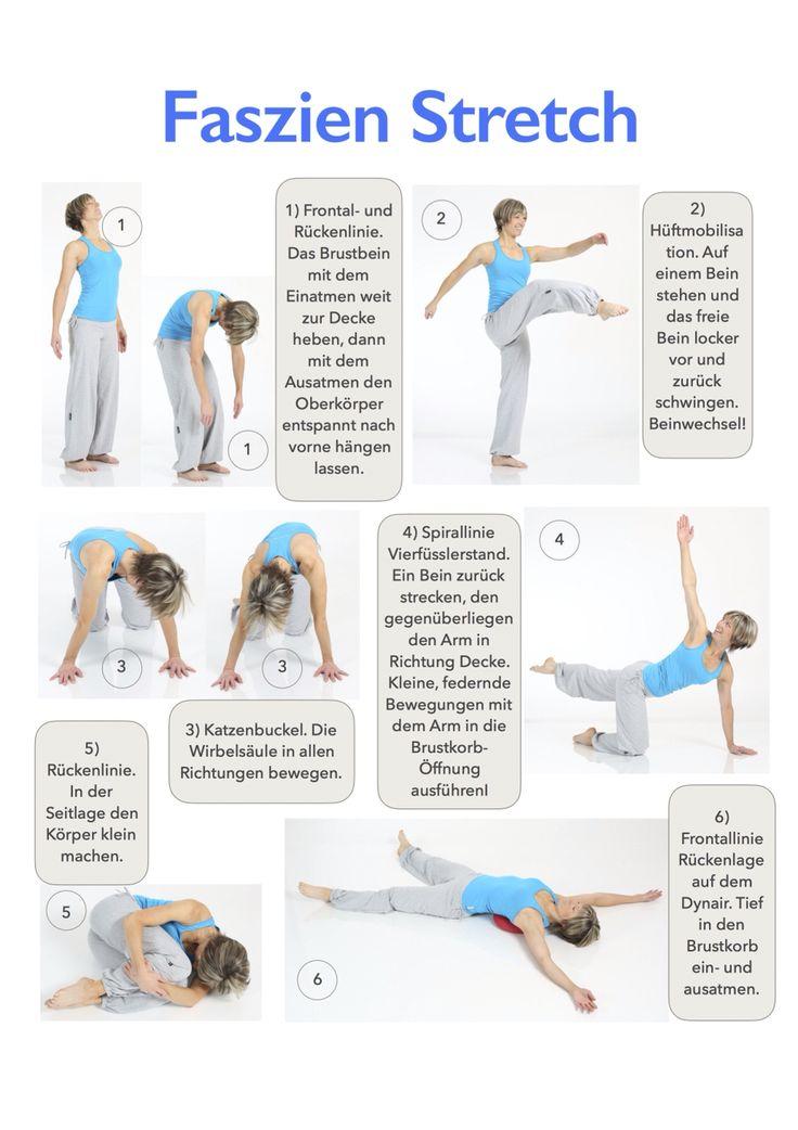 Faszien Stretch: Langsam Oder Schnell, Alle Möglichen Bewegungsrichtungen!