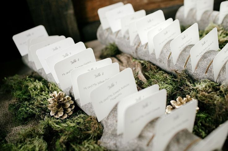 Backyard Bonfire Band : 1000+ images about The Official Unsecret Wedding Board on Pinterest