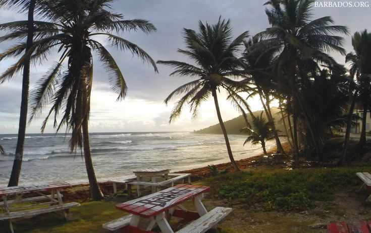 Sunrise at the tranquil and quaint Martins Bay on the east coast of Barbados