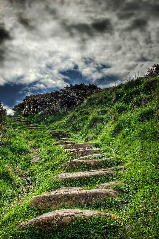 by Don Alexander Lumsden (near the beach at Fife Ness, Crail, Scotland )Stones Step, Scotland, Crail, Stairs, Paths, Beach Pathway, Places, Step Up, Fife Ness