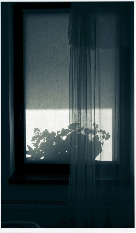 By yama-bato©yama-bato