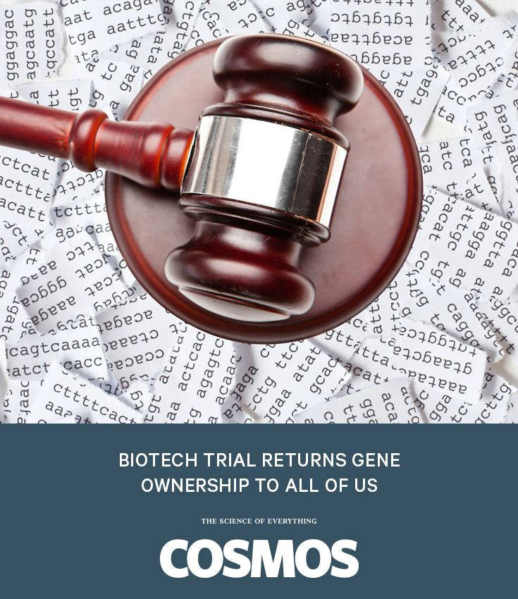 The US Supreme Court ruled that biotech companies cannot patent our genes. Is this good news for genetic research?