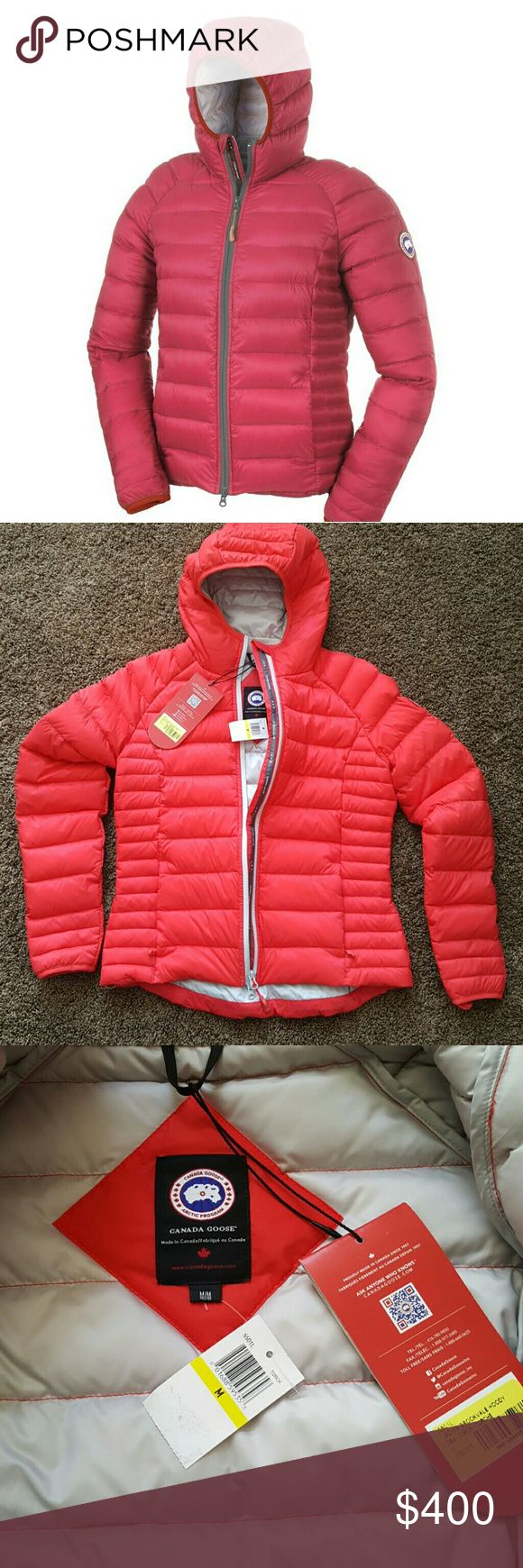 Canada Goose Brookvale Hoody - Women's Torch Its brand new with tags  Clothing sizeM ColorTorch LabelCanada Goose Package quantity1 Part number5501L PublisherCanada Goose UPC : 801688595358 Color : Torch Model : 5501L-284-M Size : Medium Canada Goose Jackets & Coats Puffers