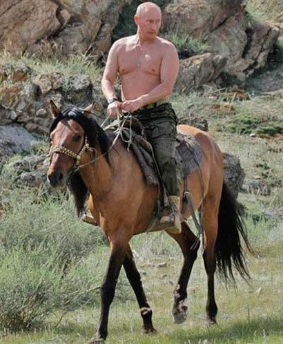 1000+ ideas about Putin Shirtless on Pinterest | Vladimir putin ...