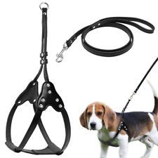 Step In Dog Harness & Leash Set With Rhinestone Studded for Chihuahua Black SML