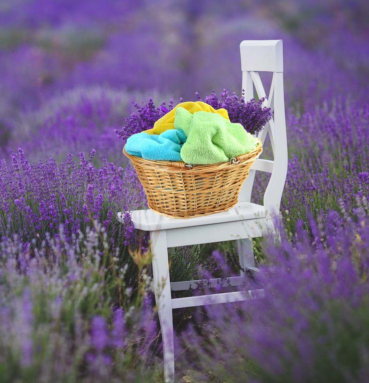 Φτιάξε εύκολα μαλακτικό για τα ρούχα με άρωμα λεβάντας