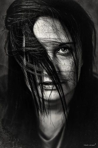 mlphoto | GALERIE