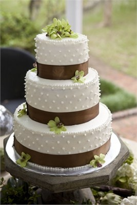 Three tier white wedding cake with brown ribbon and green floral detail: