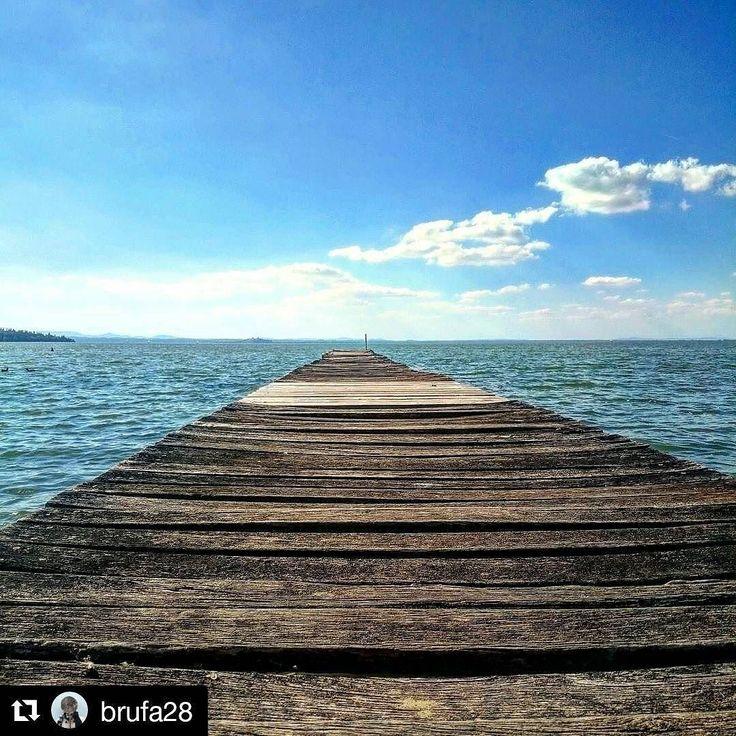 #Repost @brufa28  Il lago: la sua capacità di aspettare supera il desiderio di arrivare fino al mare (Fabrizio Caramagna) #Umbria #love_united_umbria #love_united_perugia #trasimenolake #trasimeno #volgoumbria #volgoperugia #Italy #lago #yallersumbria
