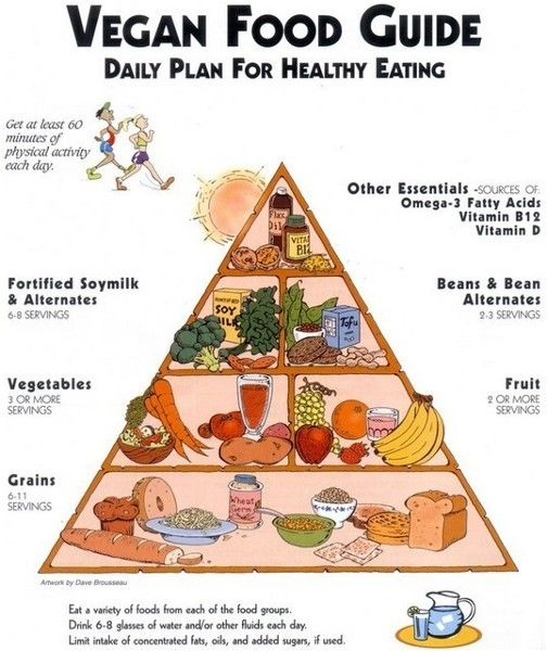 piramide del cibo vegano